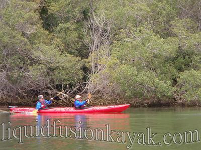 Kayaking on Fort Bragg's Noyo River