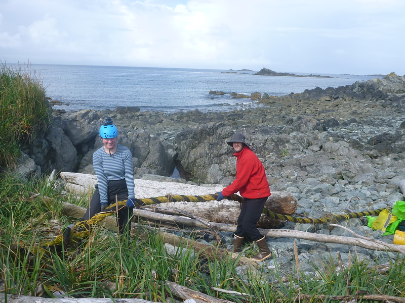 By the time Ruby and Caoimhin removed this rope from the driftwood and grass, it had to be chopped into 8 sections so it would fit in the ALPAR bags.