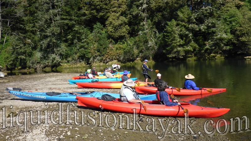 Mendocino Coast Audubon Kayak Field Trip 6.11.2016
