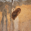 A bee hive, or part of it outside the hole in the rock.
