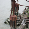 Old ferry cable pilings