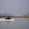 """The seldom seen kayak """"spooning"""""""