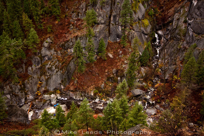Preston Woods on the Middle Fork Payette on a rainy October afternoon. Idaho