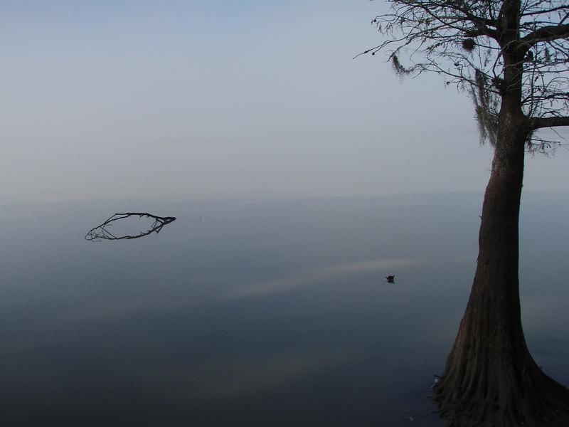 A foggy putin