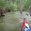 Bushwacking back from Mud Lake