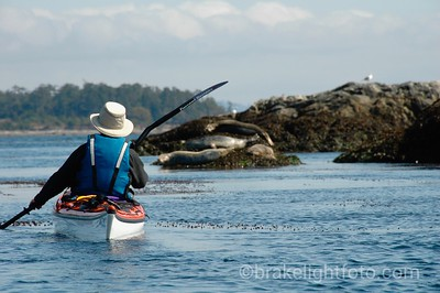 Kayaker in Chain Islets