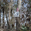 Signs along the bayou