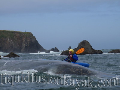 Kayaking Mendocino Coast Rock Gardens in a whitewater kayak.