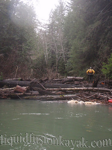 Chuck assesses the over the log portage route.