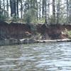 Sat/Some typical shoreline