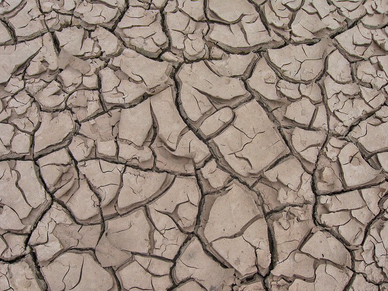 Dried Mud in Cochiti Canyon