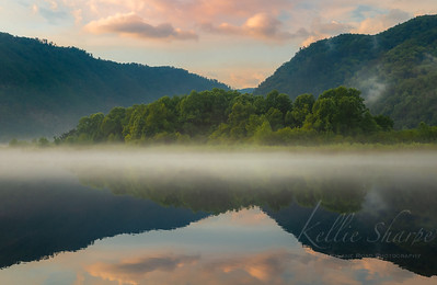 Fog on the Little Tennessee