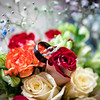 @WatersPhotography_Kaylee and Alexanders Wedding-10