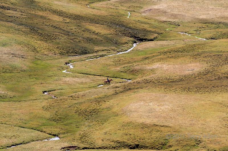 Lone Kazakh horeseman crossing a meanding stream, Assy Plateau, Kazakhstan