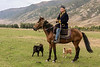 Kazakh young man on horse with two dogs ready to go for a run, Saty, Kazakhstan