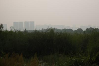 2021 оны наймдугаар сарын 10. ОХУ-ын Бүгд Найрамдах Саха улсын нутагт буюу Якутад өнгөрсөн сарын сүүлчээс өргөн хэмжээний ойн түймэр шатаж эхэлсэн билээ.  Өнгөрч буй долоо хоногт уг түймрийн утаа Улаанбаатар хотыг хоёр өдрийн турш бүрхэж байв. Тэгвэл Бямба гарагийн өглөө түймрийн утаа дахин Монгол Улсын нутаг дэвсгэрт орж ирж, Ням гарагийн шөнөөс эхлэн Улаанбаатар хотыг бүрхжээ.  Европын Холбооны агаар мандлыг судлах Copernicus төслийн вэбсайтаас үзвэл Якутын түймрийн утаа ирэх долоо хоногийн дунд хүртэл Монгол улсын газар нутгийн төв болон зүүн хэсгийг бүрхэх төлөвтэй байна.  ГЭРЭЛ  ЗУРГИЙГ Д.ЗАНДАНБАТ/MPA