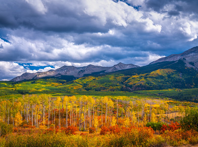 Kebler Pass Colorado Fall Colors Fine Art Landscape Nature Photography Fuji GFX100  Elliot McGucken Fine Art Landscape Nature Photography Prints & Wall Art