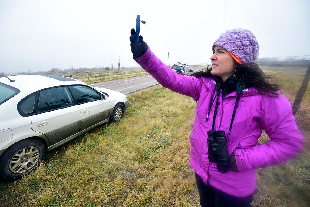 . LONGMONT, CO NOVEMBER 17, 2018  Georgia Lopez, with Front Range Nesting Bald Eagle Studies, takes a wind reading as tries to spot a nesting pair off Weld County Road 5 on Saturday November 17, 2018. The weather conditions were so bad she never could spot the eagles.  (Photo by Paul Aiken/Staff Photographer)