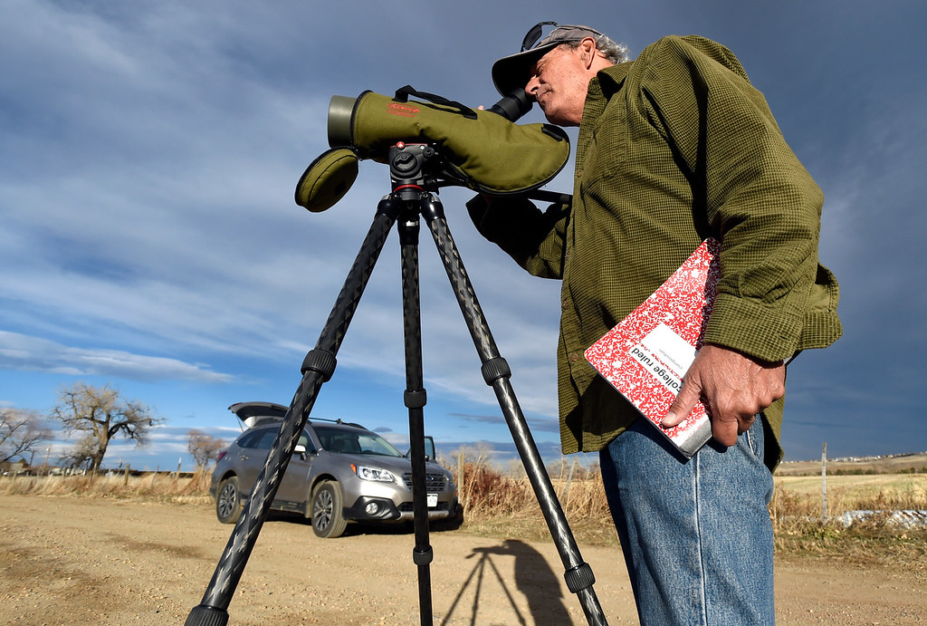 . BROOMFIELD, CO - NOVEMBER 16, 2018: Dana Bove looks through a scope to view a pair of bald eagles while conducting a study on bald eagles on Friday in Broomfield. (Photo by Jeremy Papasso/Staff Photographer)