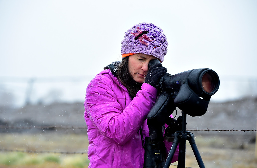 . LONGMONT, CO NOVEMBER 17, 2018  Georgia Lopez, with Front Range Nesting Bald Eagle Studies, tries to spot a nesting pair of eagles off Weld County Road 5 on Saturday November 17, 2018. The weather conditions were so bad she never could spot the eagles.  (Photo by Paul Aiken/Staff Photographer)