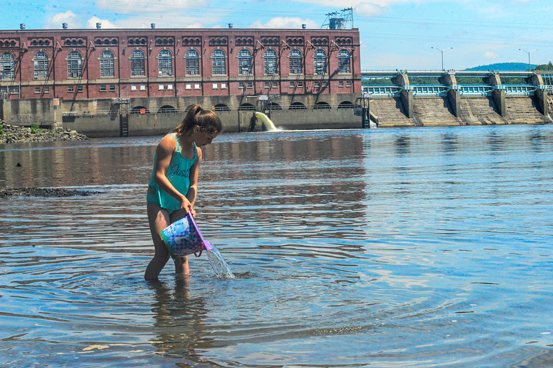 KRISTOPHER RADDER — BRATTLEBORO REFORMER<br /> Paige Jobin, 10, of Vernon, Vt., pours out a bucket of water out while catching tadpoles at the Vernon Dam on Monday, June 22, 2020.