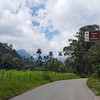 On our way to Cocora valley