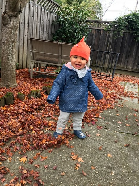 Back in chilly Fairfax and in winter baby mode
