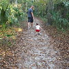 Walk at the Hillsborough River State Park