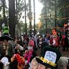 Halloween fun in Fairfax