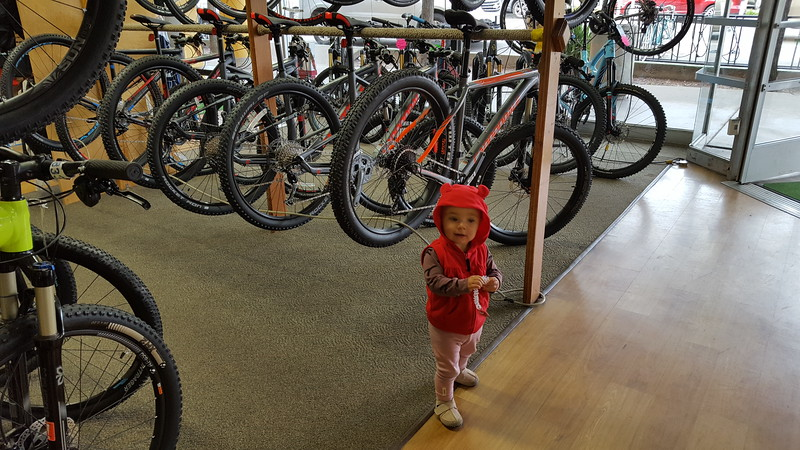 Picking my future bike...