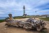 Log and Lighthouse