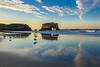 Seagull Reflections at Natural Bridges 4