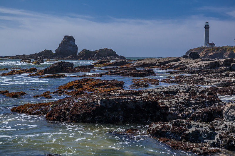 Pigeon Point Rocky Shoreline 2