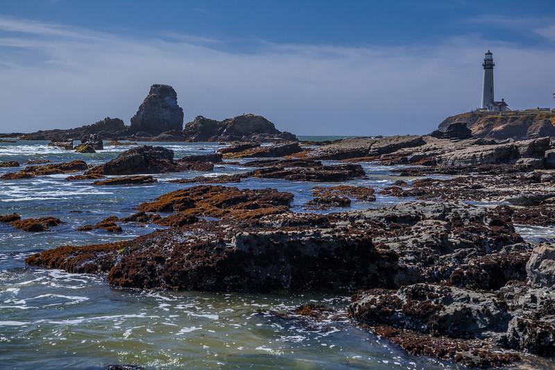 Pigeon Point Rocky Shoreline 2