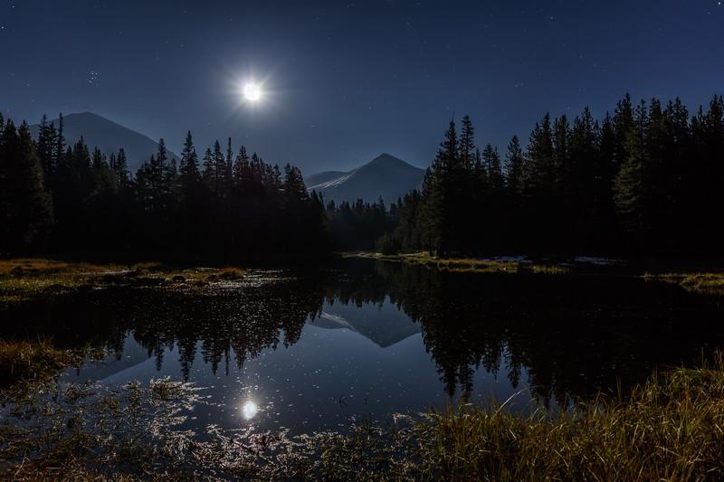 Yosemite Enchanting Night 1