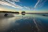 Seagull Reflections at Natural Bridges 3