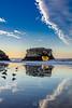 Seagull Reflections at Natural Bridges 5