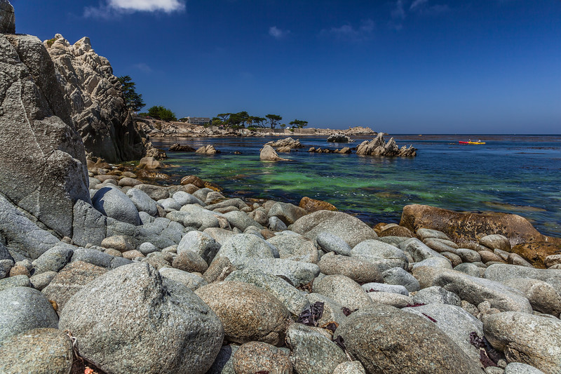 Pacific Grove Rocky Shore 2