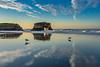 Seagull Reflections at Natural Bridges 6
