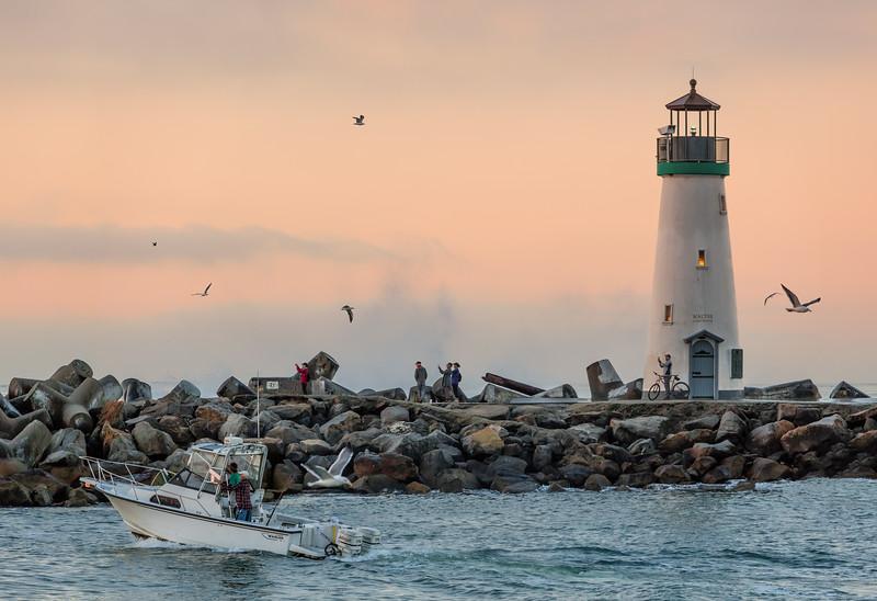 Abundant Harbor Activity