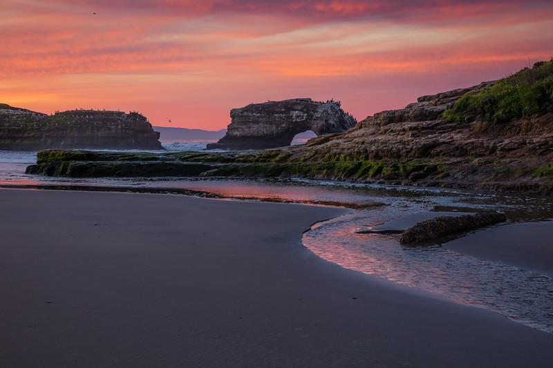 Dawn at Natural Bridges Beach 5