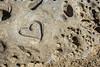 Love on a Rock