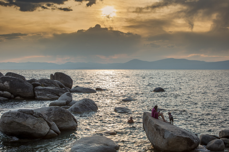 Sunset Swim Near Bonsai Rock