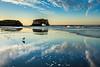 Seagull Reflections at Natural Bridges 2