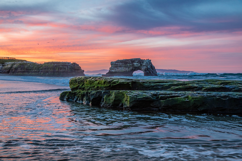 Dawn at Natural Bridges Beach 6