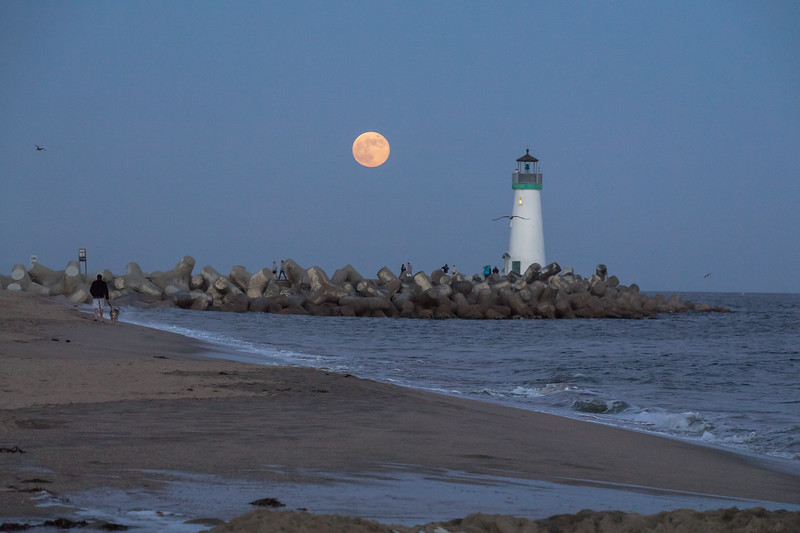 Moonrise Over the Jetty