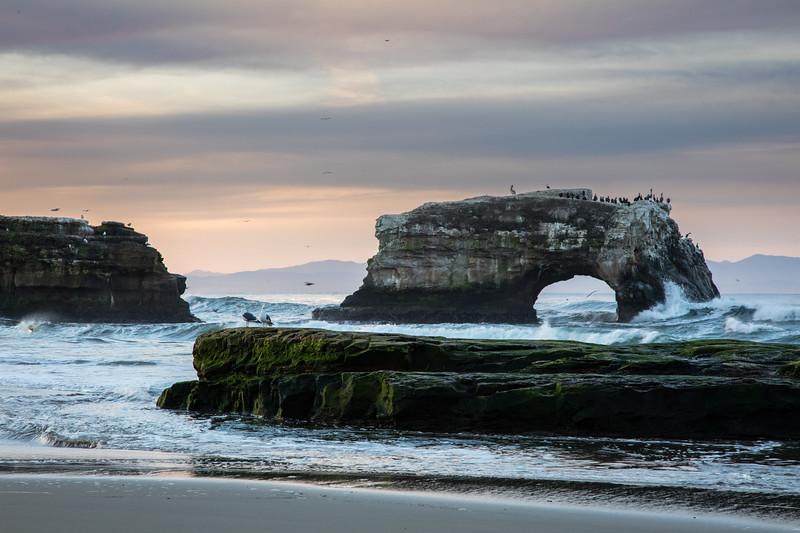 Dawn at Natural Bridges Beach 3