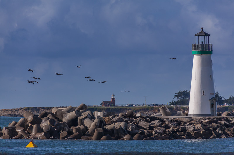 Pelicans and Lighthouses