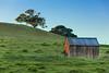 Hollister Hill Barn