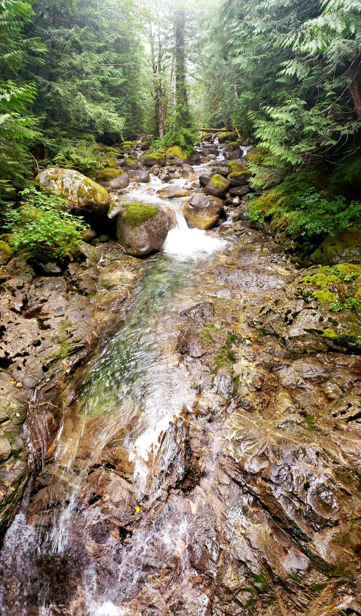 Trip Reports — Washington Trails Association